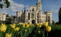 Južné Čechy a ešte čosi navyše